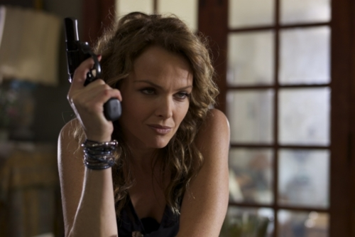 Dina Meyer criminal minds