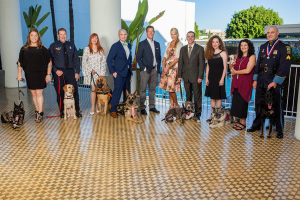 The 5th Annual American Humane Association Hero Dog Awards Preview