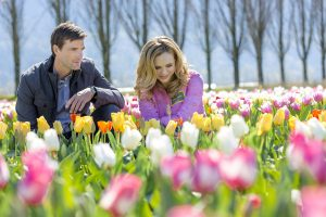 Lucas Bryant Talks Tulips in Spring, Haven, and More [Exclusive]