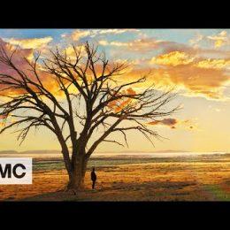 """Preacher Preview: """"South Will Rise Again"""""""
